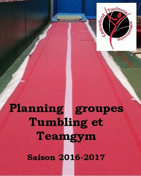 Planning groupes Tumbling et Teamgym 2016-2017