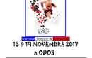 GR : Championnat inter-départemental individuelles - Odos - 18 et 19 novembre 2017