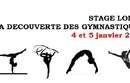 Stage loisir  Découverte des gymnastiques  - 4 et 5 janvier 2018 - Cosec de Rangueil