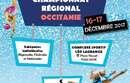 Organisation: Championnat régional des Individuelles GR - 16 et 17 décembre 2017 - Complexe sportif Léo Lagrange Toulouse